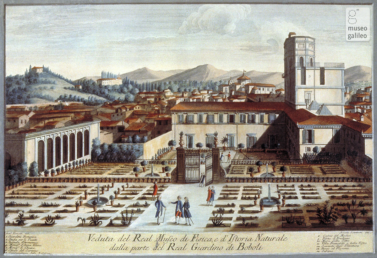 The Royal Museum of Physics and Natural History in Florence (end of 18th century)