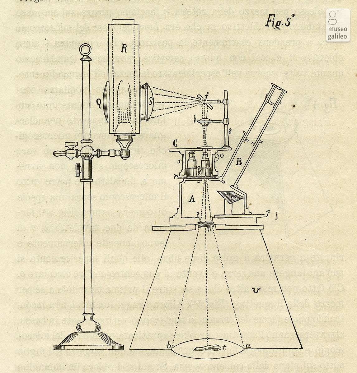 Microscopio a camera oscura (1869)